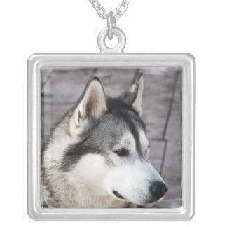 マラミュート犬のネックレス シルバープレートネックレス