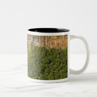 マリシャスで最も滝高いChamarel ツートーンマグカップ