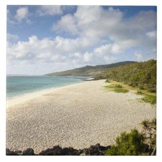 マリシャスのRodrigues島、St. Francois、St. タイル