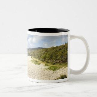 マリシャスのRodrigues島、St. Francois、St. ツートーンマグカップ