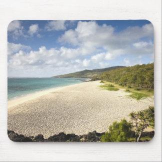 マリシャスのRodrigues島、St. Francois、St. マウスパッド