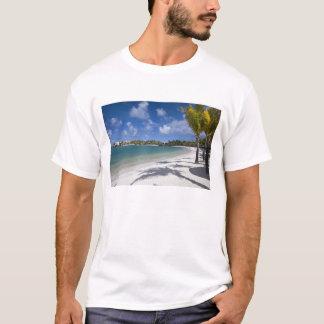 マリシャス、東のマリシャスのTrouのd Eau Douce、 Tシャツ