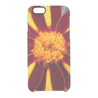 マリーゴールドのビロードの豊富な赤の黄色の花 クリアiPhone 6/6Sケース