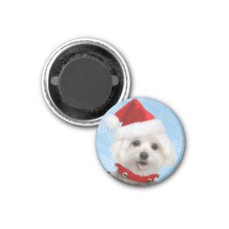 マルタの子犬のクリスマスの磁石 マグネット