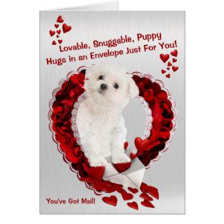 マルタの子犬-すごいかわいい郵便を持っています! カード