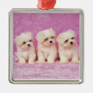 マルタ犬; 白い犬の小さい品種はそれあります メタルオーナメント