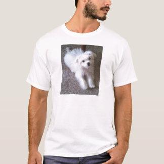 マルチーズ Tシャツ