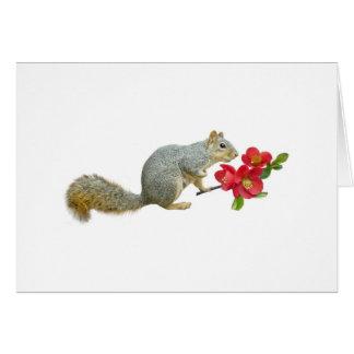 マルメロの花を持つリス カード