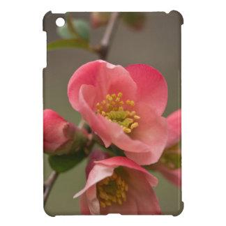 マルメロの花 iPad MINIカバー