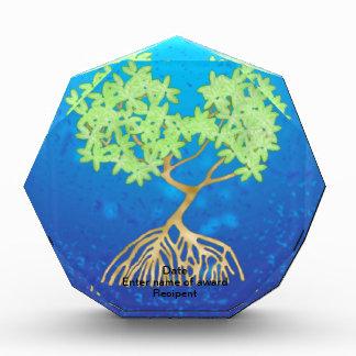マングローブの木 表彰盾