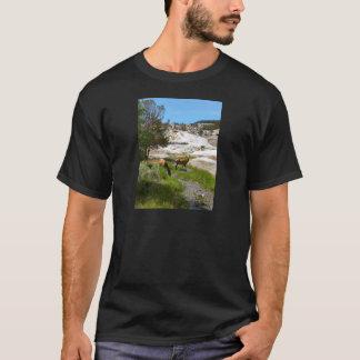 マンモス温泉のオオシカ Tシャツ