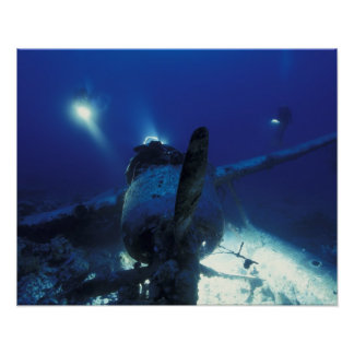 ミクロネシア、パラオ諸島の世界遺産。 ダイバー ポスター