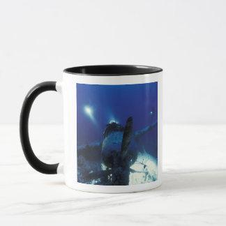 ミクロネシア、パラオ諸島の世界遺産。 ダイバー マグカップ