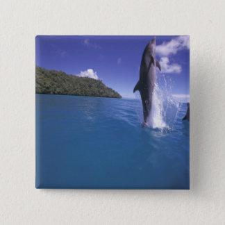 ミクロネシア、パラオ諸島のBottlenoseのdophinのハンドウイルカ属 5.1cm 正方形バッジ