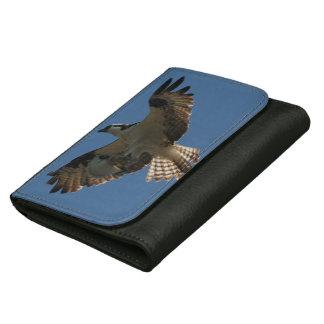 ミサゴの鳥の魚の野性生物の飛んでいるな財布