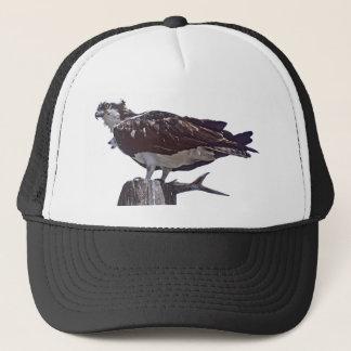 ミサゴの鳥 キャップ