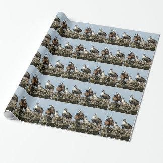 ミサゴ家族の鳥の包装紙 ラッピングペーパー