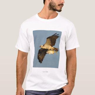 ミサゴ Tシャツ
