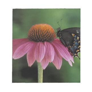 ミシガン州、ロチェスター。 Spicebushのアゲハチョウ ノートパッド