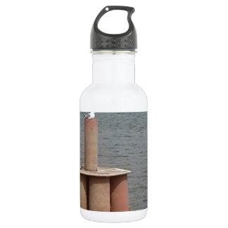 ミシシッピー川のカモメ ウォーターボトル