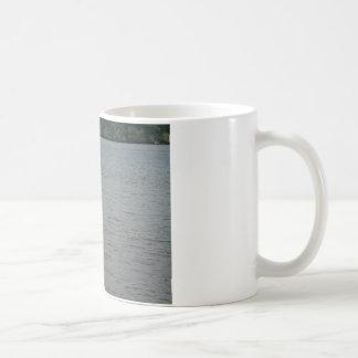 ミシシッピー川のカモメ コーヒーマグカップ