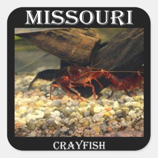 ミズーリのCrawfish スクエアシール