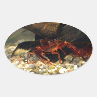 ミズーリのCrawfish 楕円形シール