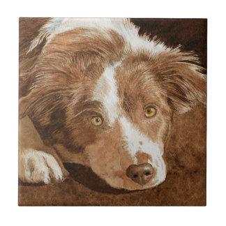 ミソサザイボーダーコリーの子犬 タイル