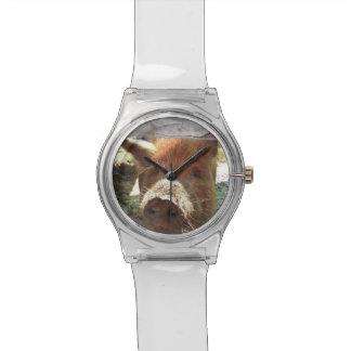 ミニチュアブタの腕時計 腕時計