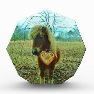 ミニチュアブラウンの馬のバレンタインのハート 表彰盾