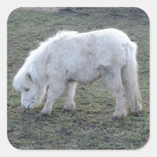 ミニチュア白馬のギフト スクエアシール
