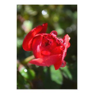 ミニチュア赤いバラの招待状 カード