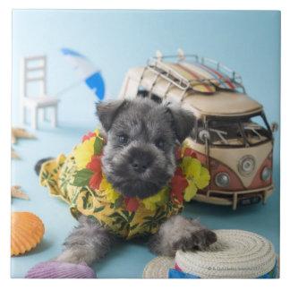 ミニチュア・シュナウツァーの子犬および夏期休暇 タイル