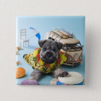 ミニチュア・シュナウツァーの子犬および夏期休暇 缶バッジ
