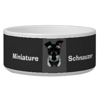 ミニチュア・シュナウツァーの小犬ボール