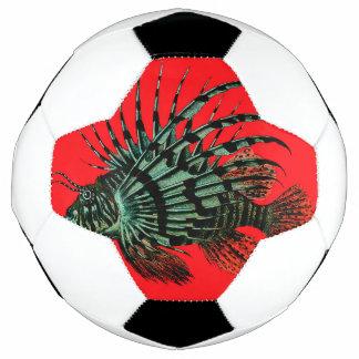 ミノカサゴのサッカーボール サッカーボール