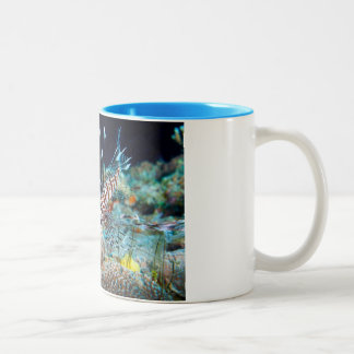 ミノカサゴのマグ ツートーンマグカップ