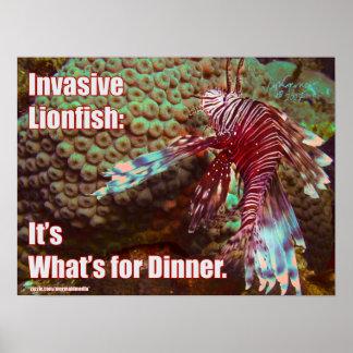 ミノカサゴ: それはであるものが夕食のためです ポスター