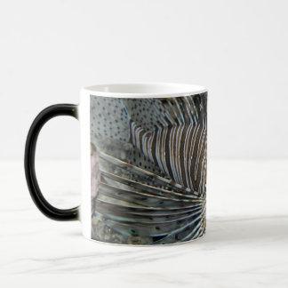 ミノカサゴ モーフィングマグカップ