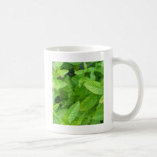 ミント コーヒーマグカップ