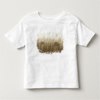 ムギの写真撮影の閉めて下さい トドラーTシャツ