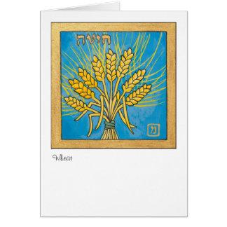 ムギ、イスラエル共和国の7つの種の1 カード