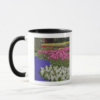ムスカリ、hyacinthおよびチューリップの庭、 マグカップ