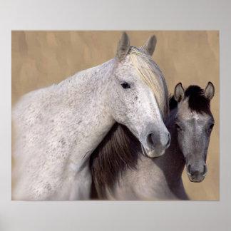 ムスタングサリーおよびウイルソン馬のプリント ポスター