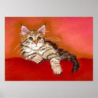 メインのあらいぐまの子ネコ猫のポートレート ポスター