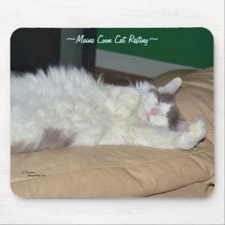 メインのあらいぐま猫の睡眠のマウスパッド マウスパッド