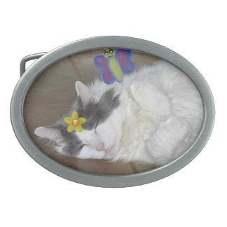 メインのあらいぐま猫の睡眠の蝶ベルトの留め金 卵形バックル