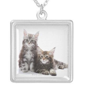 メインのあらいぐま猫の2匹の子ネコ シルバープレートネックレス