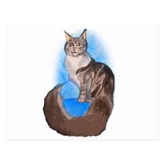 メインのあらいぐま猫 ポストカード