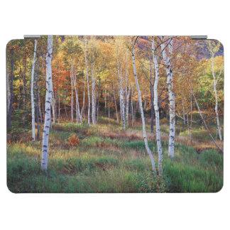 メインのアカディア国立公園、秋 iPad AIR カバー